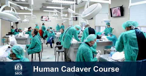 Human Cadaver Course Vienna